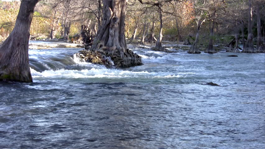 Video of a south Texas river with a waterfall and lined with Cypress trees. Beautiful scenery.