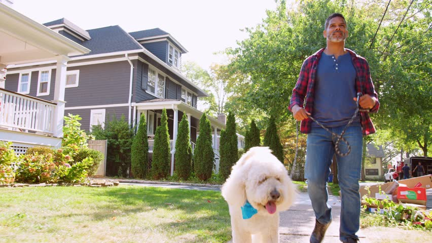 Low Angle Shot Of Man Walking Dog Along Suburban Street | Shutterstock HD Video #1007400361