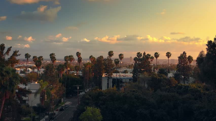 Aerial view, descending near Hollywood Boulevard with palm trees, city of Los Angeles cityscape and epic sunset sky in background. 4K UHD. | Shutterstock HD Video #1007443219