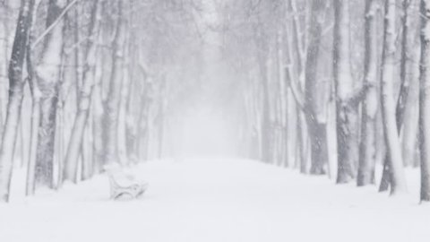 strong snowfall on alley in town with wind blurred background