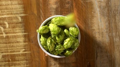 hops falling into white bowl - top view in slow motion.