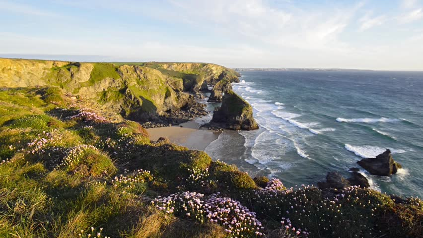 Summer time in Cornwall with sea thrift in bloom on cliffs above Bedruthan Steps on the South West Coast Path between Padstow and Newquay