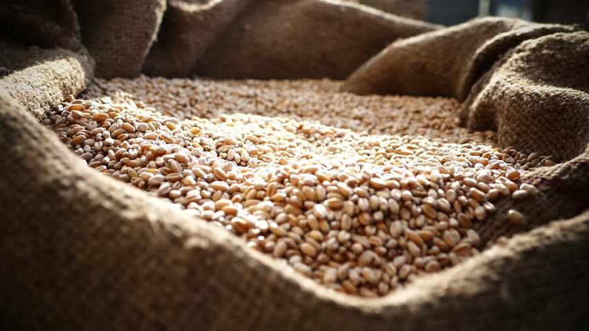 wheat sacks - 852×480