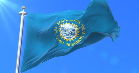 Flag of american state of South Dakota, region of the United States, waving at wind - loop