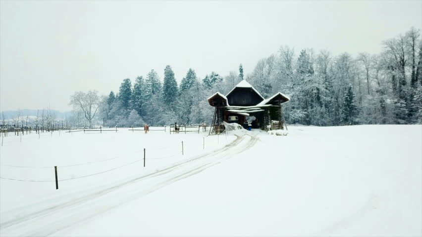There is an isolated barn in winter time. The nature is completely white and two horses are outside on fresh air. Aerial shot.