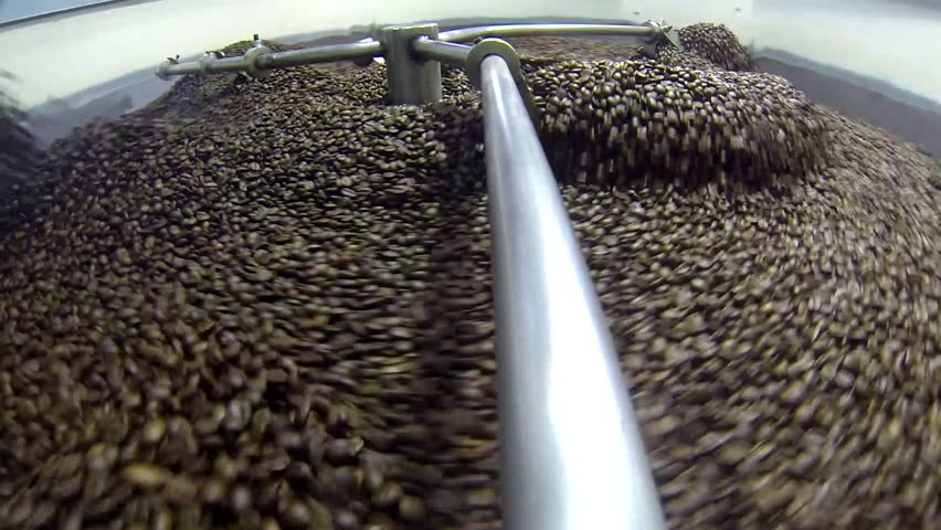Production of fresh fried coffee beans roasting factory process , prepared coffee beans mixing around on a cooling plate of an oven.  | Shutterstock HD Video #1007987881