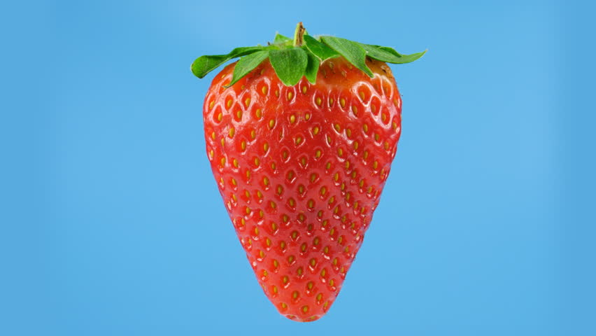 One big red strawberry, looped rotation, blue background ready for keying, ProRes codec, 422 HQ