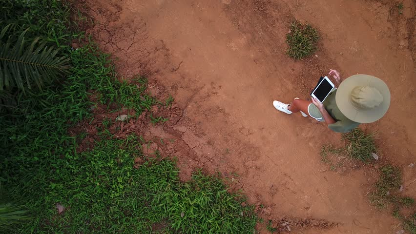 AERIAL. Camera moving fast from down to up. Top view directly above a asian female farmer in the hat monitoring his farm with a tablet. Palms farm in Thailand. | Shutterstock HD Video #1008307771