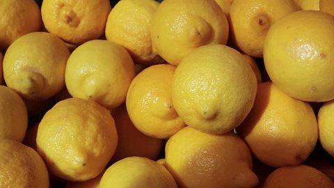 lemon harvest. many lemons. lemons close up