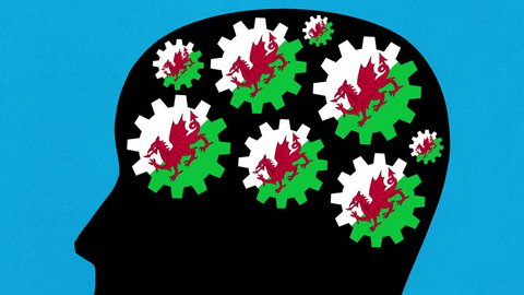 Turning welsh flag gears in human head profile zooming out