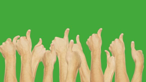 People group simultaneously showing thumb up on green chroma key background. People hand showing gesture ok isolated on green background. Alpha channel, keyed green screen.
