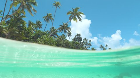 HALF IN HALF OUT, SLOW MOTION: Incredibly beautiful tropical beach is swept by emerald ocean waves on a sunny day in Fiji. Clear blue skies and amazing palm trees stretch over the perfect blue sea .