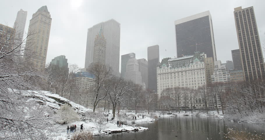 New York City Central Park in snow | Shutterstock HD Video #1008879671