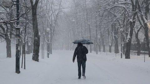 People walk on snowy road. Snow is falling on the street. Winter weather scene. Winter storm