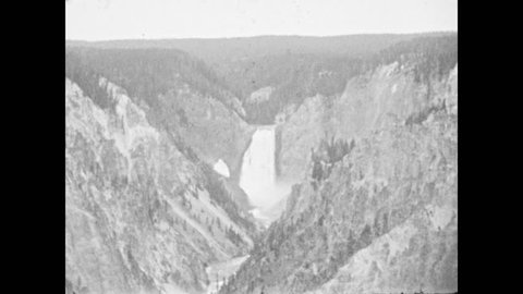 1930s: Wide view of Lower Falls in Yellowstone's Grand Canyon. Young black bear sniffs around car for food. Open cars of tourists drive by. Young bear leaves the road into the meadow.