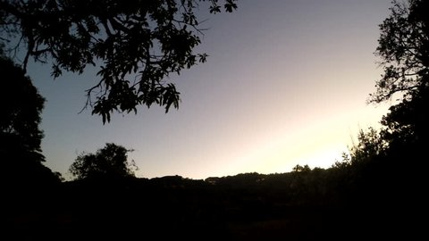 A reverse time lapse of a stunning evening with trees and clouds in the background.