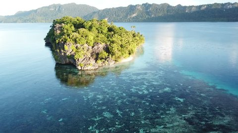 A beautiful limestone island, surrounded by calm waters and coral reefs, is found in Raja Ampat, Indonesia. This unique, equatorial region is best known for its vast array of marine biodiversity.