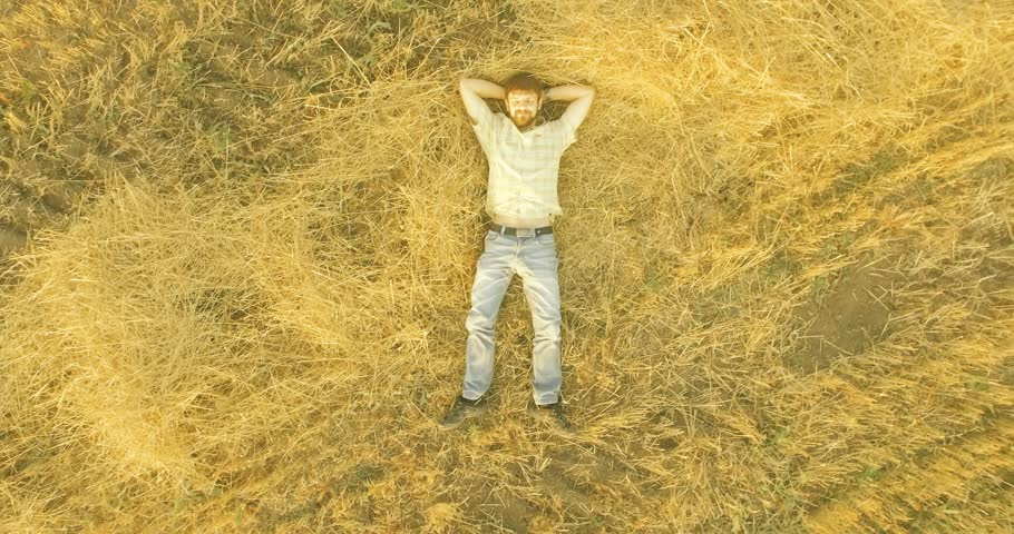 Aerial UHD 4K view. Vertical motion flight over formalwear man lying on yellow wheat field at sunny summer day. Top view on handsome relaxing man.