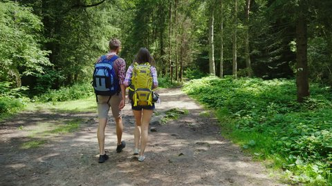 Rear view:Friends with backpacks on their backs follow a path in the forest. Active young people in the hike