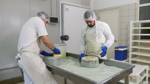 men washing cheese shapes-Diary Cheese Fcatory- Cheese production