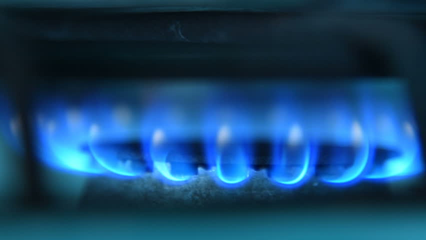 Close-up shot of blue burning fire of gas stove | Shutterstock HD Video #1010179181