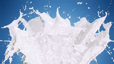Beautiful Milk and Cream Splashes in Slow Motion and Freeze Motion, Alpha Mask. Flying Through Drops. Useful for Titles and Intro. 3d Animation Food and Health Concept. 4k UHD 3840x2160.