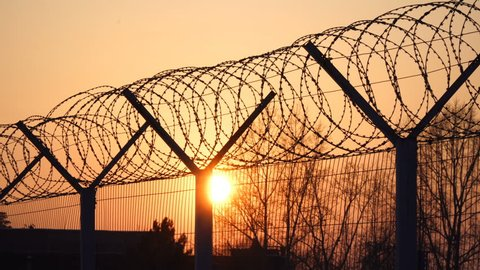 Prison barbed wire fence at sunset. Bright sun and trees silhouette freedom 4k