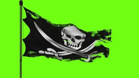 flag 3d model green screen