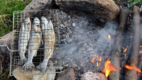 Preparing and grilling fresh and delicious trout fish. Marinaded trout fish on grill. Preparing fish food in camp in nature. Barbeque in the garden