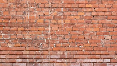 Red brick wall for background texture.