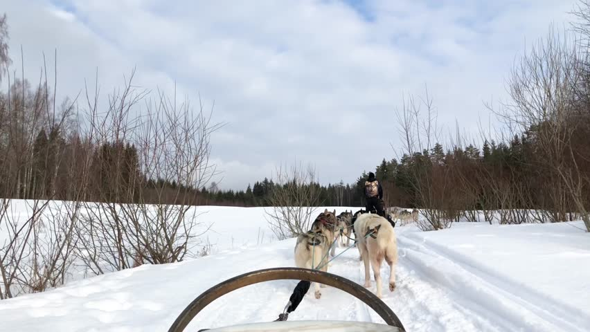 Header of sled