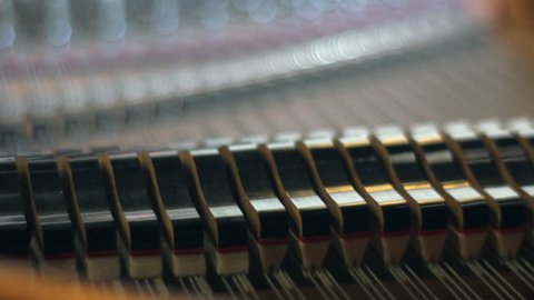 playing piano - view of ropes and hammers