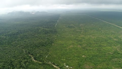 Farm land next to Jungle aerial survey