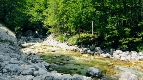 Forest landscape with a running stream, mountain river and rocks.