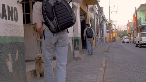 Caucasian man wearing a backpack and a hat bends down to pet a friendly stray poodle like dog in Mexico