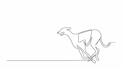Self drawing animation of continuous one line drawing of isolated vector object - greyhound dog running racing