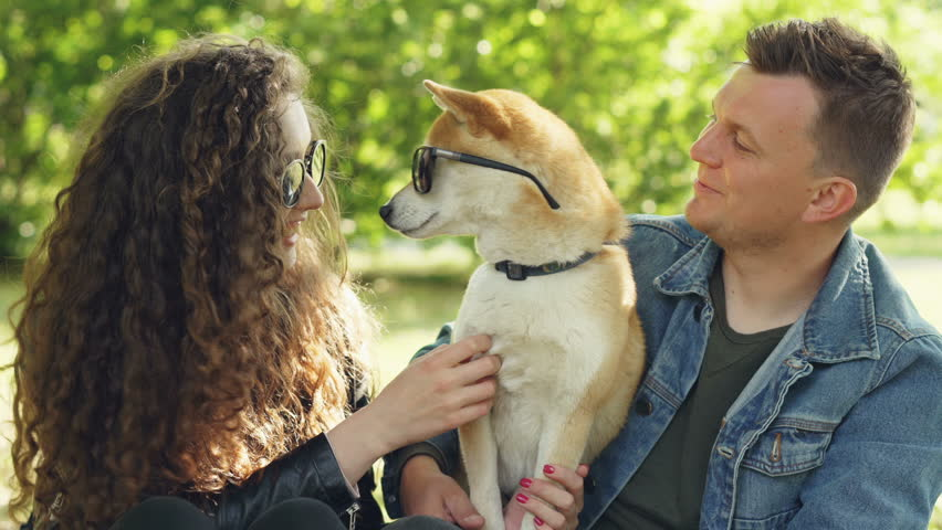 Attractive woman and her husband are playing with dog putting sunglasses on it, caressing its fur and patting its back and neck. Loving animals and having fun concept.