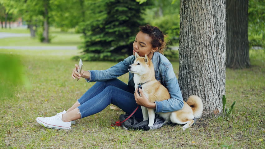 Attractive African American girl is taking selfie with cute dog resting in city park cuddling and caressing beautiful animal. Modern technology, loving pets and nature concept. | Shutterstock HD Video #1012911851