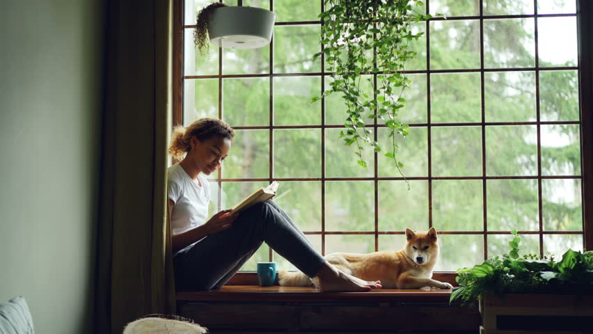 Attractive girl in casual clothes is reading book sitting on window sill barefoot near adorable pet dog lying near her owner. Home, hobby and animals concept. | Shutterstock HD Video #1012914671
