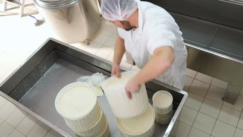 Diary cheese factory: operators moving big shape of fresh cheese