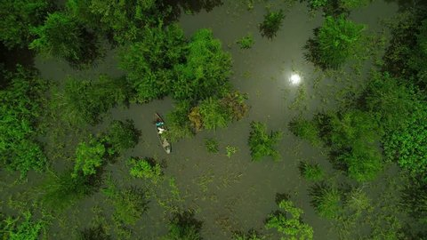 Man on canoe fishing in the Amazon jungle in Brazil, seen overhead from drone, aerial view