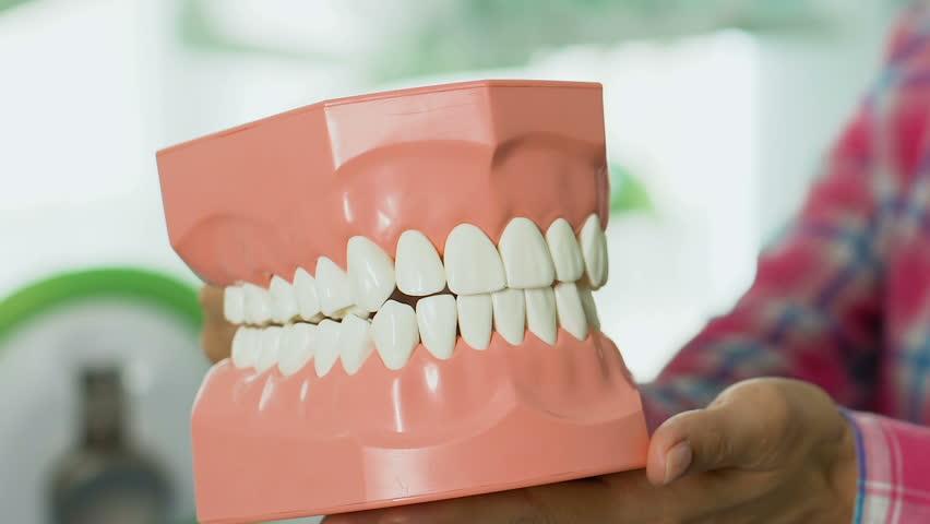 Teacher showing to children structure of jaw, dental hygiene lesson at school | Shutterstock HD Video #1013228591