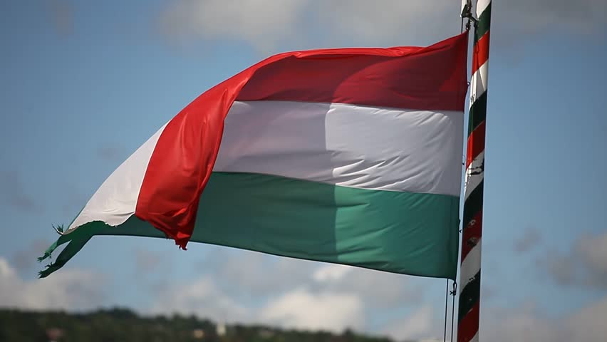 Hungarian flag flutters in the wind