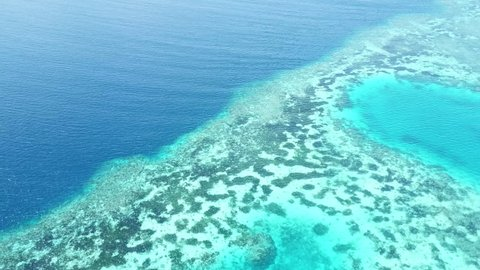 Aerial view of a spectacular coral reef in Wakatobi National Park in Indonesia. This region harbors extremely high marine biodiversity and is a popular destination for scuba diving and snorkeling.
