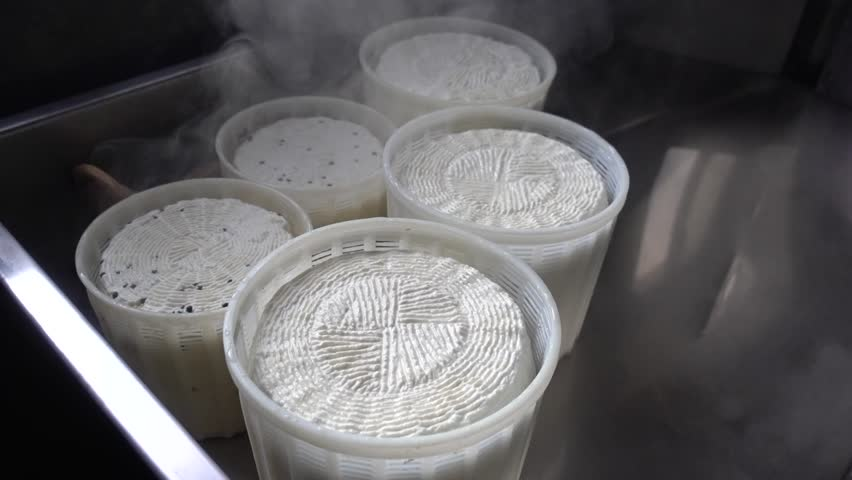 preparation of diary product: ricotta cheese and fresh cheese. Here is the steam going out of warm cheese buckets under a soft source of light