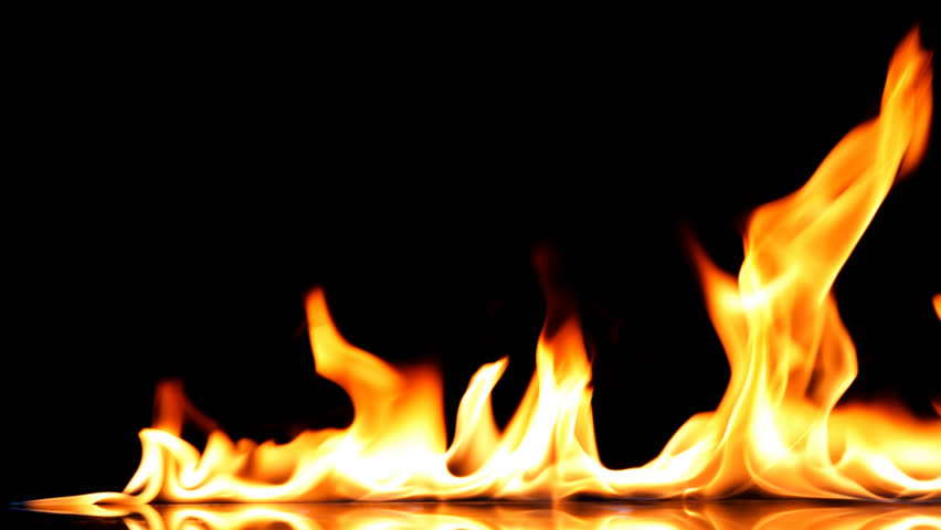 Fire Flames Igniting And Burning - Slow Motion. A line of real flames ignite on a black background. 4K Real fire. Transparent background UltraHD. PNG + Alpha | Shutterstock HD Video #1013824481