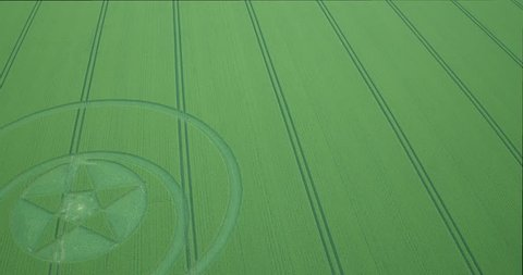 Aerial view of crop circle, Wiltshire, UK