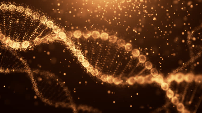 DNA molecule structure.Science concept and colour  background | Shutterstock HD Video #1014019541