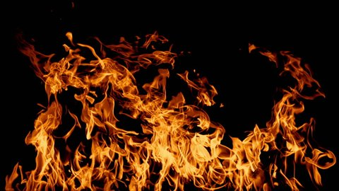 Fire Looping in slow motion isolated seamless loop. Looping Fire Element, Slow Motion Fire Ignition From Bottom To Top.  Isolated fire flame