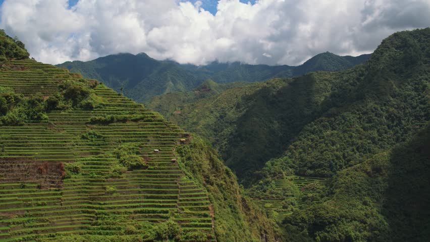 Aerial shot of the green rice fields and mountains in Batad, Phillipines